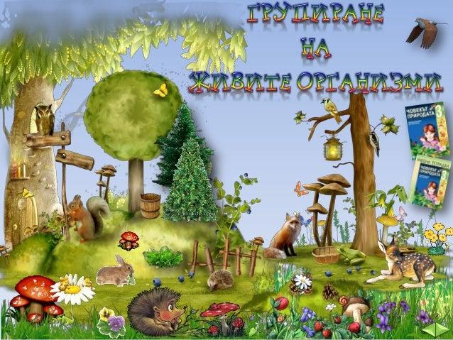 Кликни върху картинката.  Живите организми са: животните, растенията и гъбите. А човекът? Човекът е от групата на животнит...
