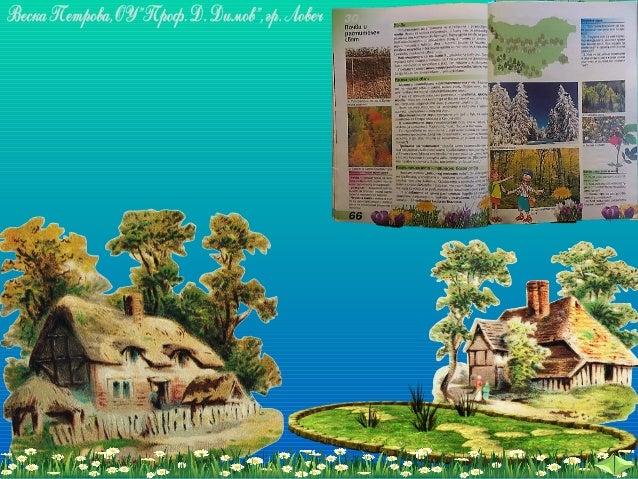 Почва и растителен свят - ЧО, 3 клас, Булвест Slide 2