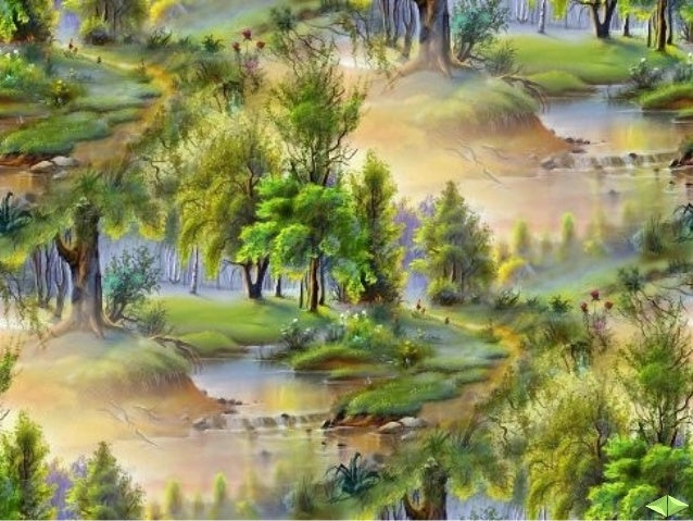 Почва и растителен свят - ЧО, 3 клас, Булвест Slide 3