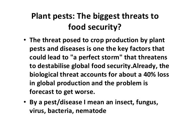 Biggest Problem With Biological Food Production