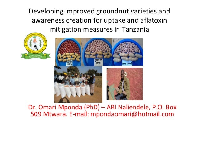 Developing improved groundnut varieties and awareness creation for uptake and aflatoxin mitigation measures in Tanzania  D...