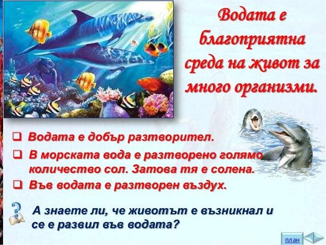 Животните, живеещи във водата се разделят на две големи подгрупи:  ЖИВОТНИ В МОРЕТО  СОЛЕНОВОДНИ БАСЕЙНИ  ЖИВОТНИ В РЕКИТЕ...