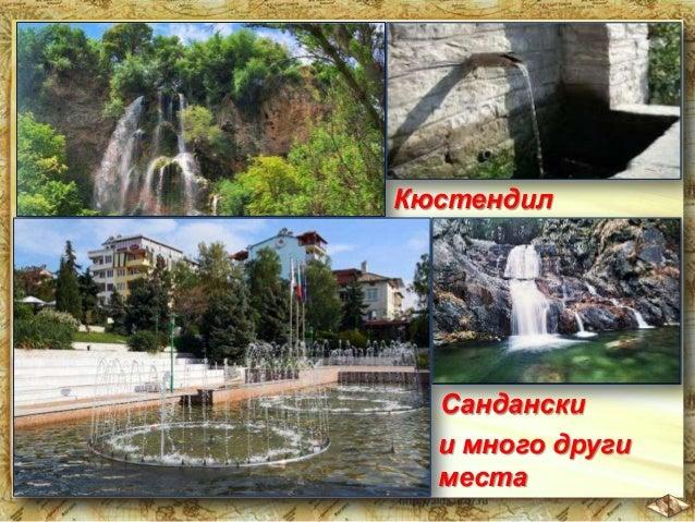 """В Пирин се намира """"Байкушевата мура"""", която по възраст е """"сестра – близнак"""" на българската държава – над 1300 години."""
