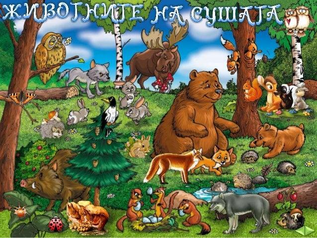 ГРУПИРАНЕ НА ЖИВОТНИТЕ, ЖИВЕЕЩИ НА СУШАТА: Животните, живеещи на сушата, се разделят на три групи:  ЖИВОТНИ В РАВНИНИТЕ ЖИ...