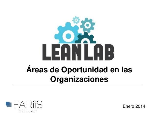 Áreas de Oportunidad en las Organizaciones  Enero 2014