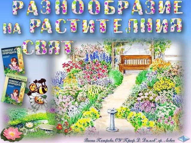 диворастящи градински стайни декоративни зеленчуциплодове