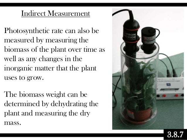 Indirect Measurement Photosynthetic rate can also be measured by measuring the biomass of the plant over time as well as a...