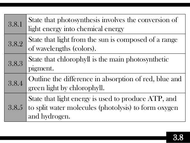 3.8 3.8.1 State that photosynthesis involves the conversion of light energy into chemical energy 3.8.2 State that light fr...