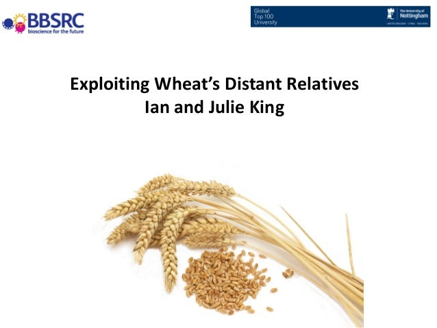 Exploiting Wheat's Distant Relatives Ian and Julie King