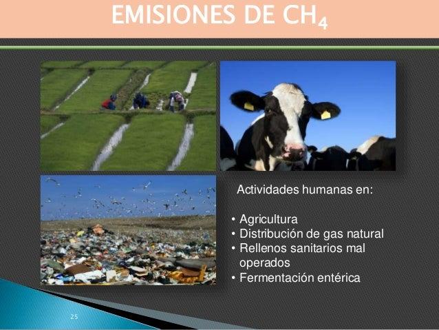 EN RESUMEN… • Los gases de efecto invernadero son necesarios para la vida en el planeta… el exceso de estos gases es lo qu...