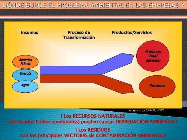 Materias Primas Energía Agua Producto Final deseado Residuos Insumos Proceso de Transformación Productos/Servicios Adaptad...