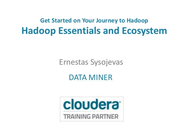 Get Started on Your Journey to Hadoop Hadoop Essentials and Ecosystem Ernestas Sysojevas DATA MINER