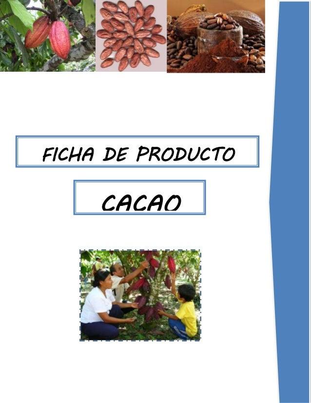 FICHA DE PRODUCTO CACAO