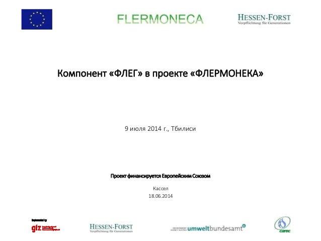 Компонент «ФЛЕГ» в проекте «ФЛЕРМОНЕКА» 9 июля 2014 г., Тбилиси Кассел 18.06.2014 Проект финансируется Европейским Союзом