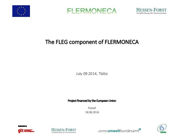 The FLEG component of FLERMONECA July 09 2014, Tbilisi Kassel 18.06.2014 Project financed by the European Union