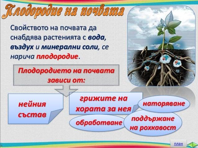 За да е плодородна, почвата  трябва да се обработва и  да се поддържа рохкава.  Рохкавата почва задържа  повече въздух и в...