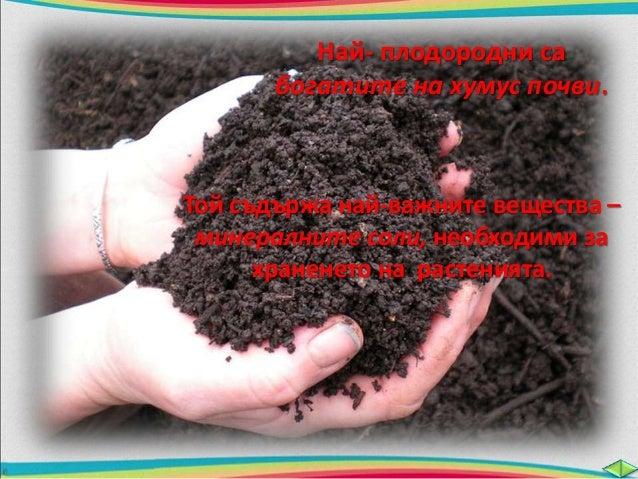 Селскостопанските растения  извличат от почвата  минералните соли и така  намаляват плодородието ѝ.