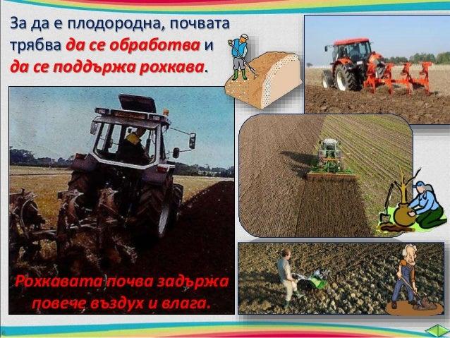За да поддържат плодородието, хората  трябва да наторяват почвата.