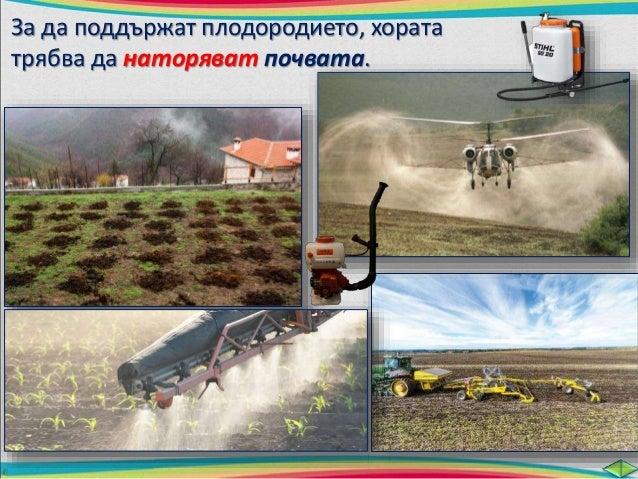 план  Основни замърсители  на почвата са:  Промишлените  и битовите  отпадъци.  Препарати за борба  с вредители по  растен...
