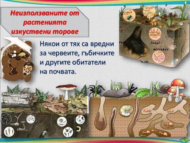 Избройте пет съставни части на почвата. Кои от тях са  твърди вещества, кои са течности и кои – газове?  камъчета пясък гл...