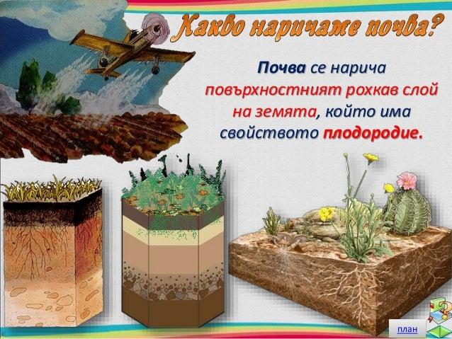 Разгледайте внимателно почвата с помощта на лупа.  От какво е съставена тя?  план