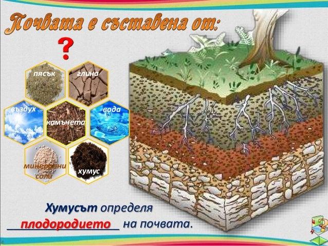 наторяване  план  Свойството на почвата да  снабдява растенията с вода,  въздух и минерални соли, се  нарича плодородие.  ...