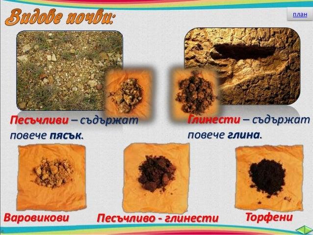 Най- плодородни са  богатите на хумус почви.  Той съдържа най-важните вещества –  минералните соли, необходими за  хранене...