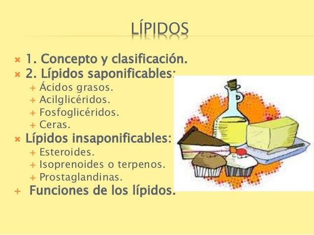 esteroides definicion y funcion