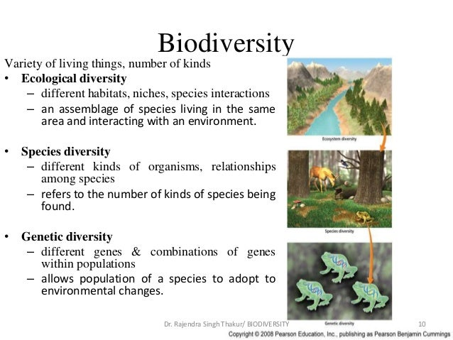 a view on the biodiversity and the variety of life Biological diversity — or biodiversity — is the term given to the variety of life on  with a view to the sustainable management and use of biological resources.
