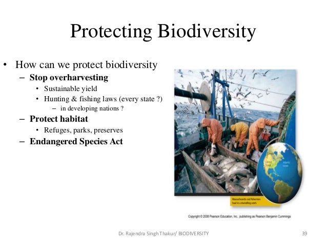 protection of biodiversity in state of Biodiversity protection is a new chapter in the dramas of pub- lic land management and urban development in america 1 4 to de- velop this country, we have destroyed or manipulated the natural.