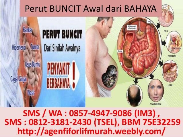 Perut BUNCIT Awal dari BAHAYA SMS / WA : 0857-4947-9086 (IM3) , SMS : 0812-3181-2430 (TSEL), BBM 75E32259 http://agenfifor...