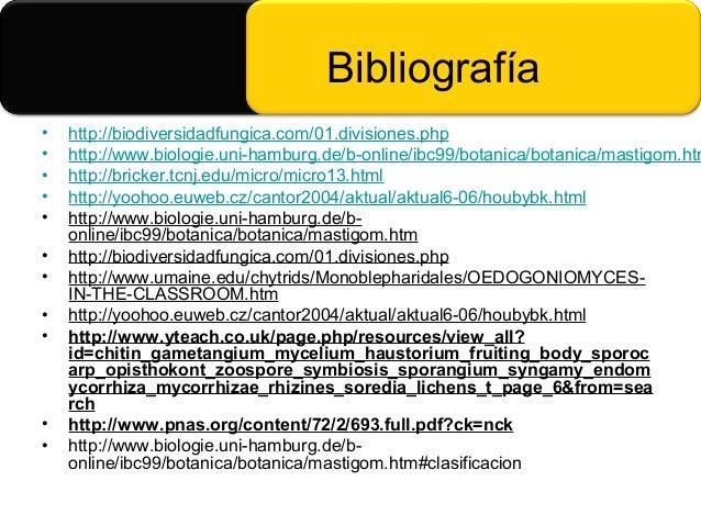 Biologia de mastigomycota y chitridiomycetes