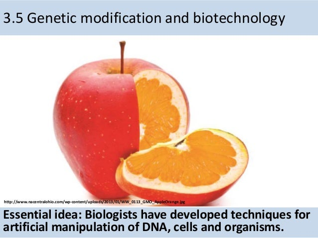 3.5 Genetic modification and biotechnology Essential idea: Biologists have developed techniques for artificial manipulatio...