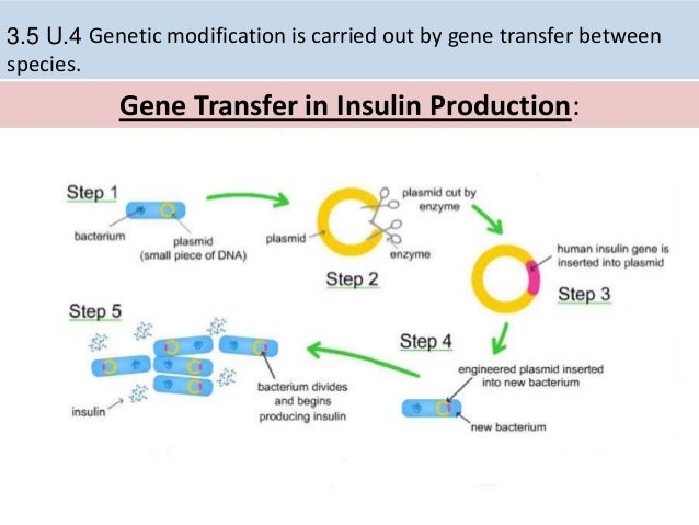 horizontal gene transfer and biotechnology benefits Tyler kaplan department of biology lake forest college lake forest, illinois  60045  horizontal gene transfer contributes to the spread of antibiotic  resistance.
