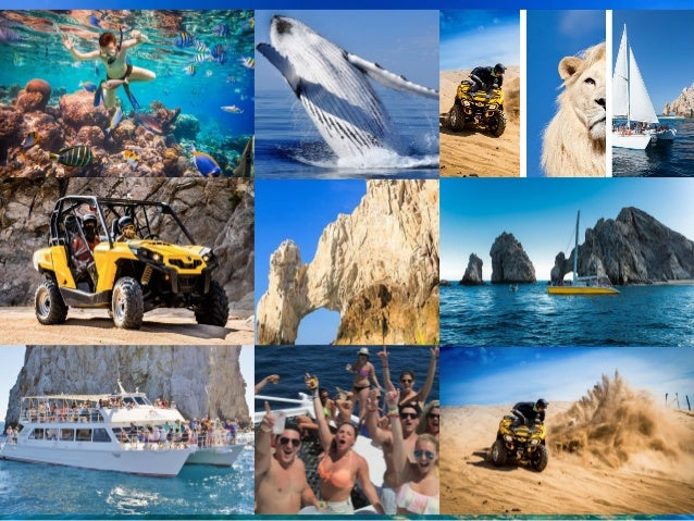 Cabo Adventures Tours And Activities