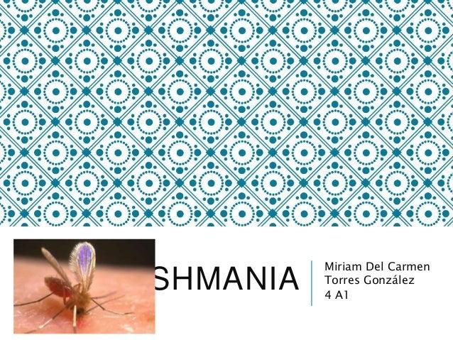 LEISHMANIA Miriam Del Carmen Torres González 4 A1