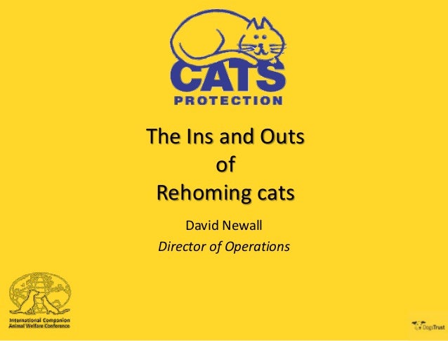 The Ins and Outs of Rehoming cats David Newall Director of Operations