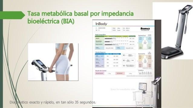 3. metabolismo basal