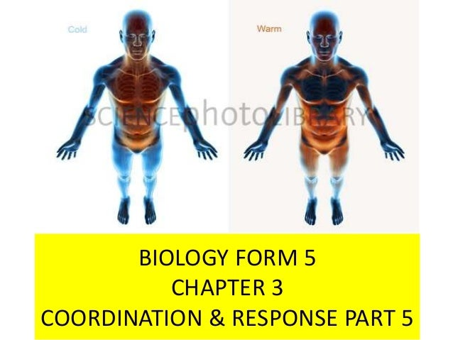 BIOLOGY FORM 5 CHAPTER 3 COORDINATION & RESPONSE PART 5