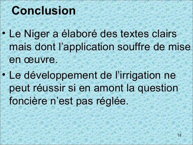 Conclusion • Le Niger a élaboré des textes clairs mais dont l'application souffre de mise en œuvre. • Le développement de ...