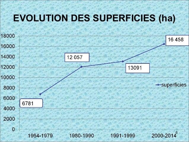 EVOLUTION DES SUPERFICIES (ha) 6