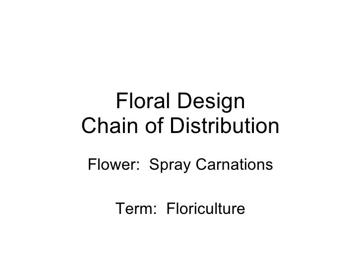 Floral Design Chain of Distribution Flower:  Spray Carnations Term:  Floriculture