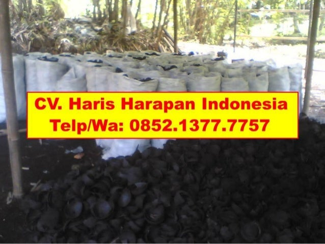 Pabrik Arang Batok Kelapa Surabaya, Call/WA: 0852.1377 ...