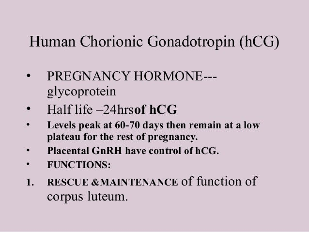 Pregnancy hormone human chorionic gonadotropin rejection
