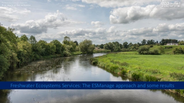 River Boyne at Brú na Bóinne Freshwater Ecosystems Services: The ESManage approach and some results Picture by Giorgio Gal...