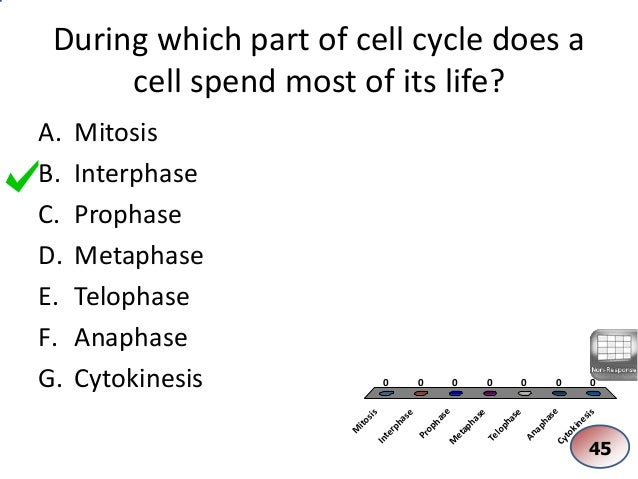 a short overview of the cell cycle Summary of the cell cycle introduction over time, many of the cells that make up our bodies age, die and need to be replaced the process by which a cell reproduces to create two identical copies is known as mitosis.