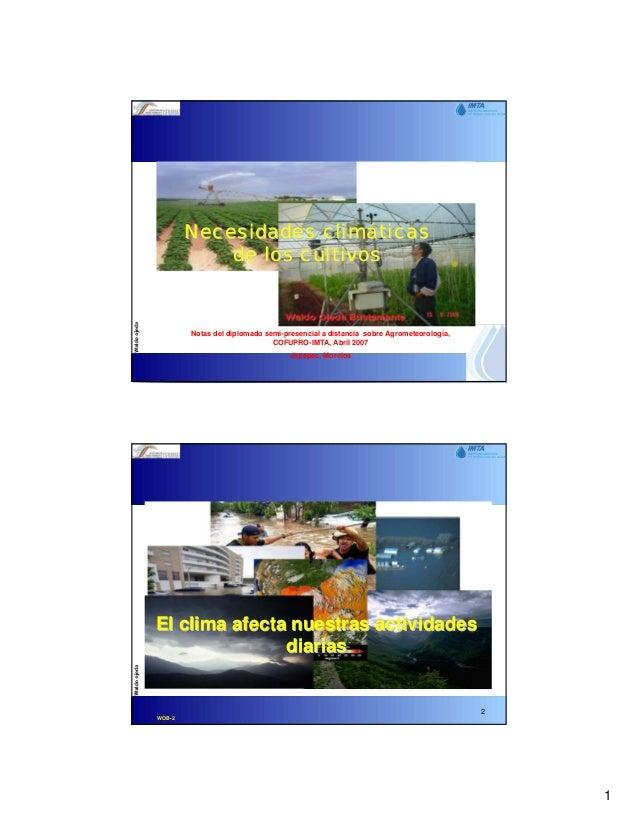 Necesidades climáticas            de los cultivos        Notas del diplomado semi-presencial a distancia sobre Agrometeoro...
