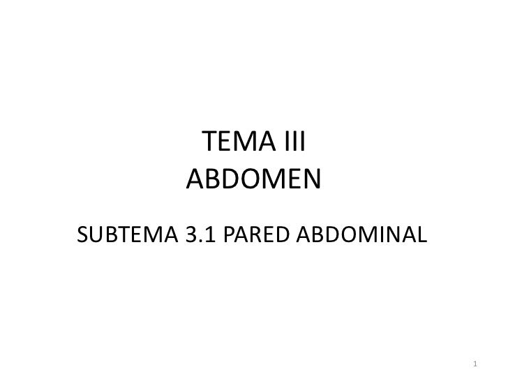 TEMA IIIABDOMEN<br />SUBTEMA 3.1 PARED ABDOMINAL<br />1<br />