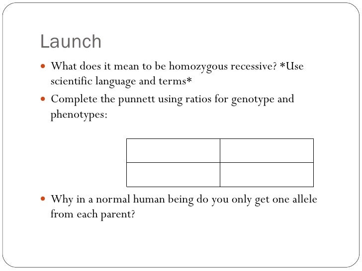 Launch <ul><li>What does it mean to be homozygous recessive? *Use scientific language and terms* </li></ul><ul><li>Complet...