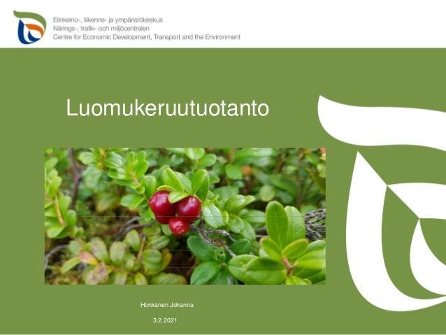 Luomukeruutuotanto 3.2.2021 Honkanen Johanna